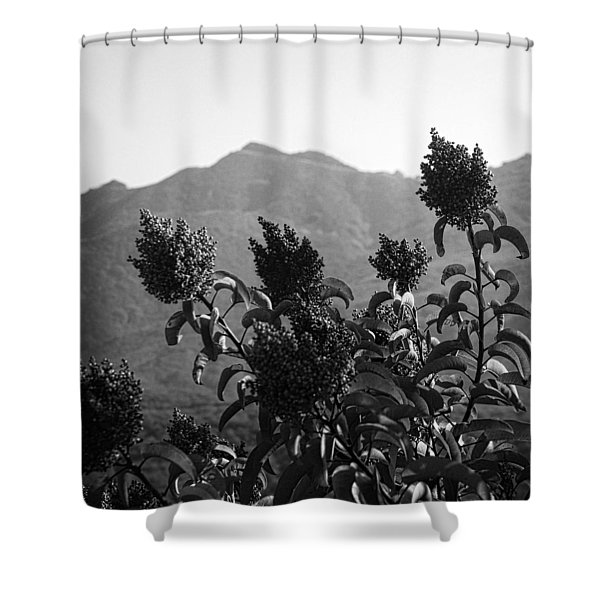 Mountains And Vegetation Shower Curtain