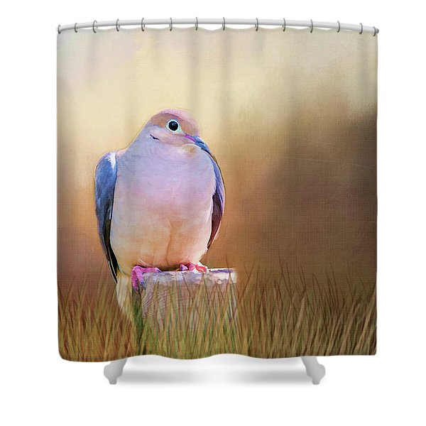 Mourning Dove Painted Portrait Shower Curtain