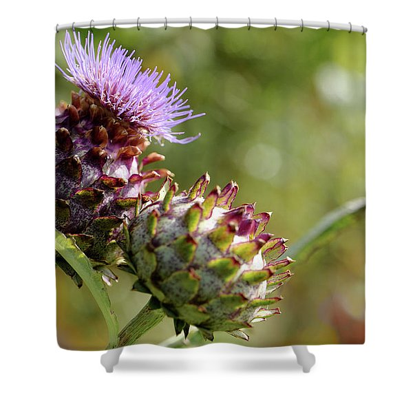 Mr And Mrs Thistle  Shower Curtain