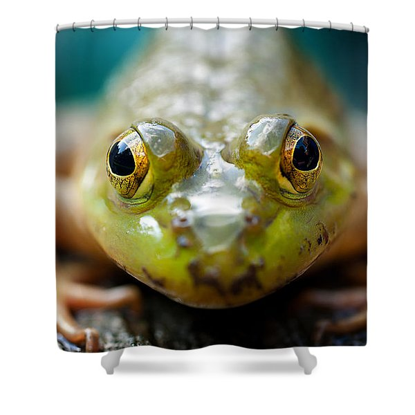 Mr Frog Shower Curtain