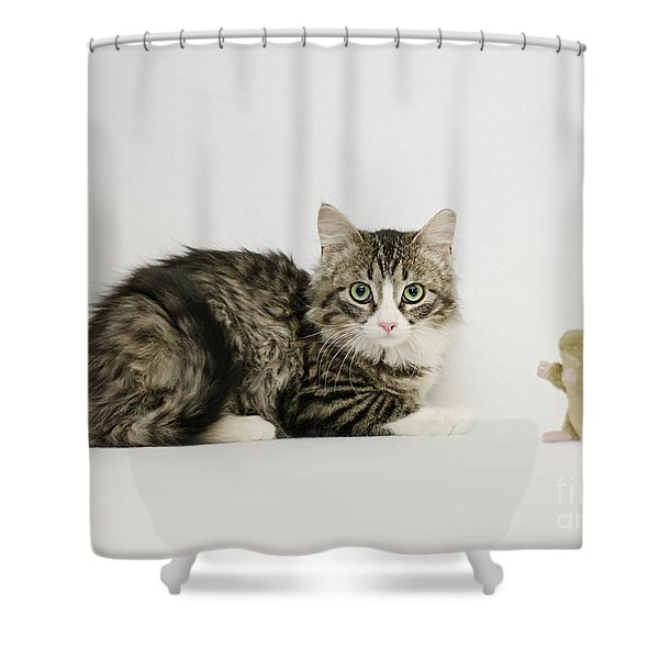 Ms Alexia And Mouse Shower Curtain