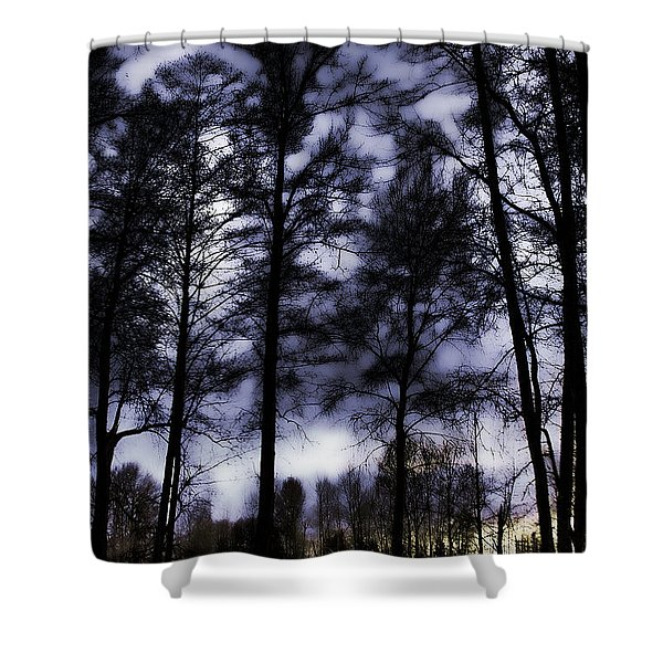 Mt Vernon At Dusk Shower Curtain