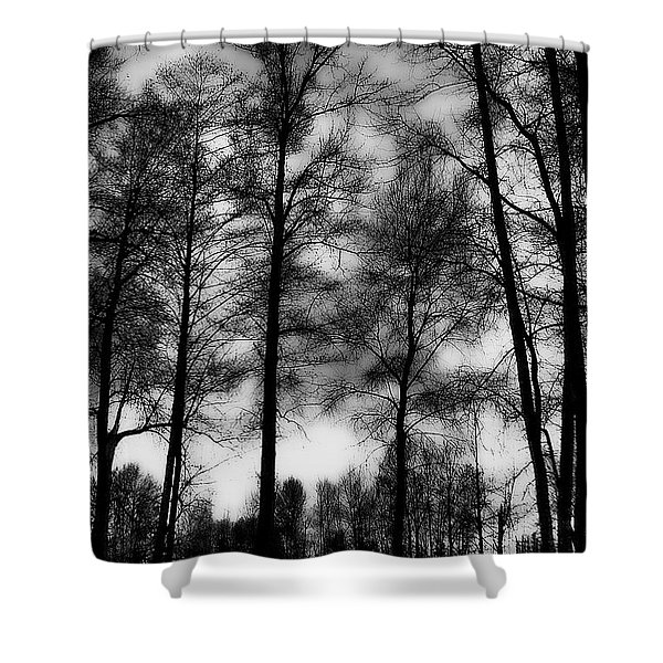 Mt Vernon Landscape Shower Curtain