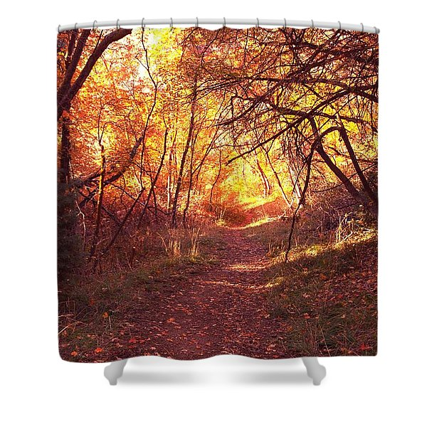 Mueller Park In The Fall Shower Curtain