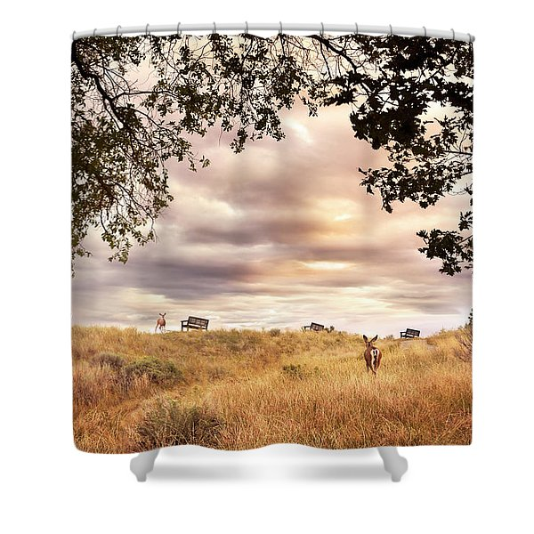 Munson Morning Shower Curtain