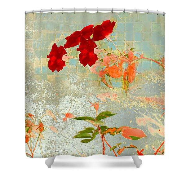Muro Viejo Shower Curtain