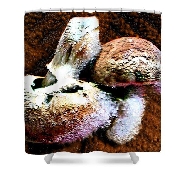 Mushroom Love Shower Curtain
