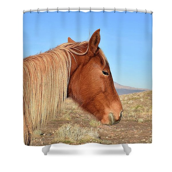 Mustang Mare Shower Curtain