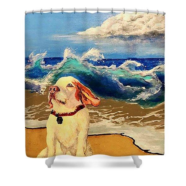 My Dog And The Sea #1 - Beagle Shower Curtain
