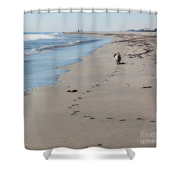 My Morning Walk Shower Curtain