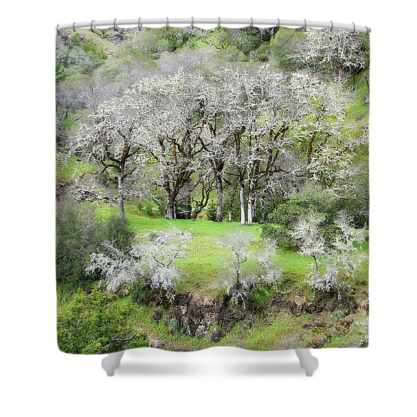 Mysterious Landscape In Sonoma County Shower Curtain
