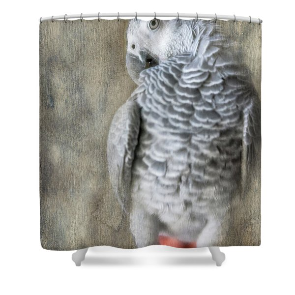 Mysterious Parrot Shower Curtain