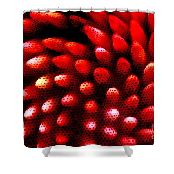 Naked Porcupine Shower Curtain