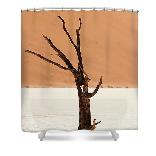 Namib Desert Shower Curtain