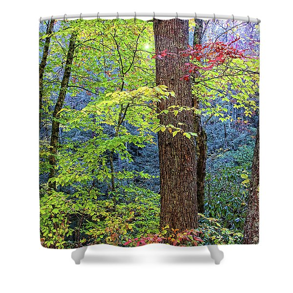 Nantahala Shower Curtain