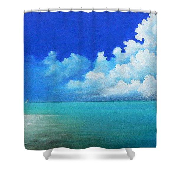 Nap On The Beach Shower Curtain