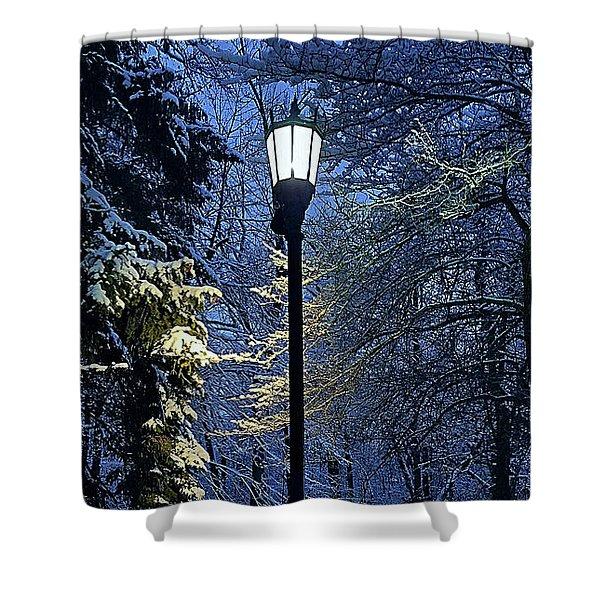 Narnia Shower Curtain