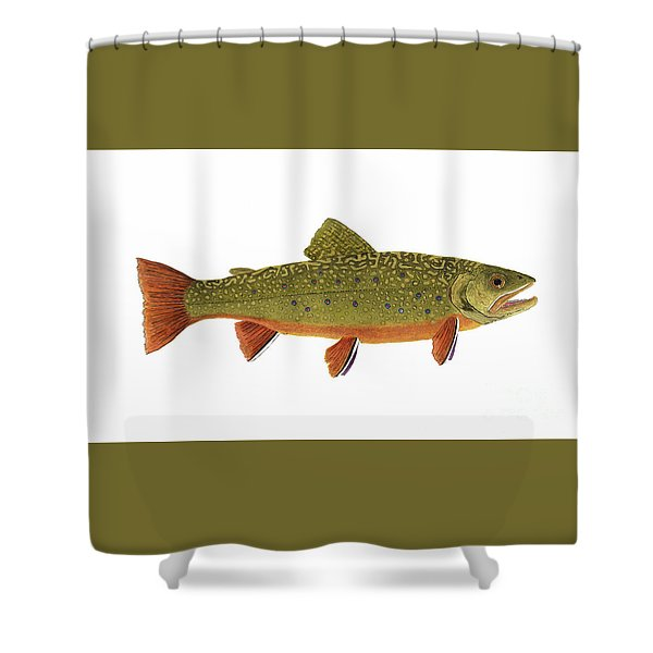 Native Brook Trout Shower Curtain