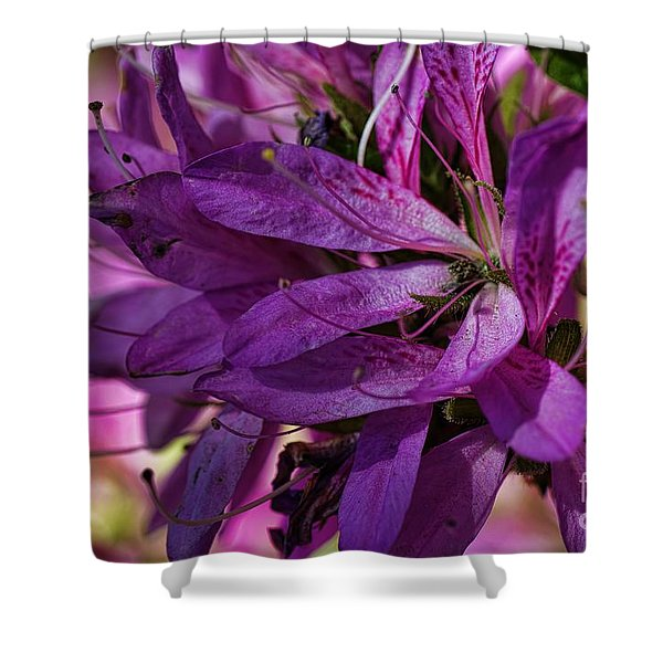 Native Long Petals Shower Curtain