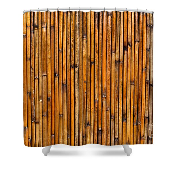 Natural Bamboo Background Shower Curtain