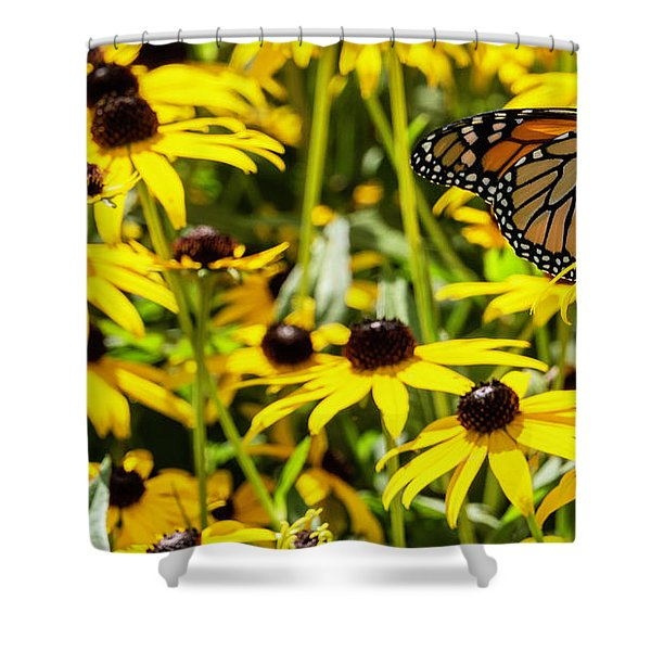 Monarch Butterfly On Yellow Flowers Shower Curtain
