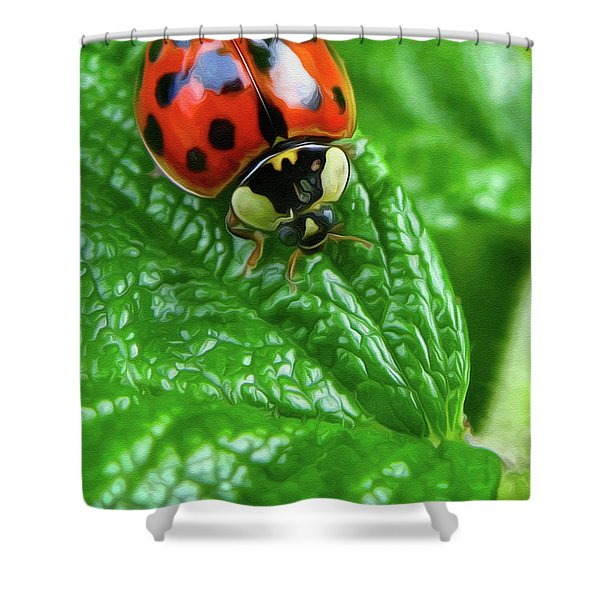 Natural Color Contrast Shower Curtain