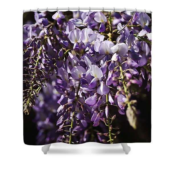 Natural Wisteria Bouquet Shower Curtain