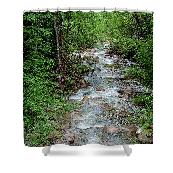 Naturally Pure Stream Backroad Discovery Shower Curtain