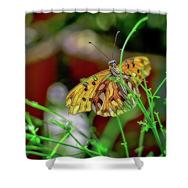 Nature - Butterfly And Plants Shower Curtain