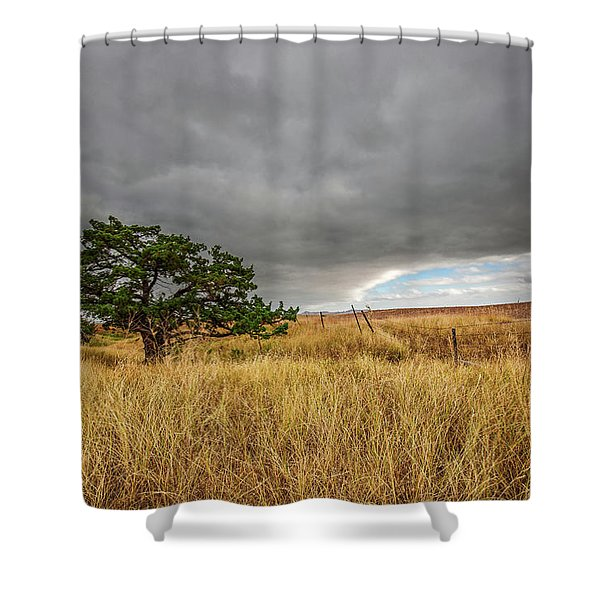 Nature - Lone Tree In South Dakota Badlands Shower Curtain