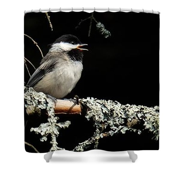 Nature Up Close Shower Curtain