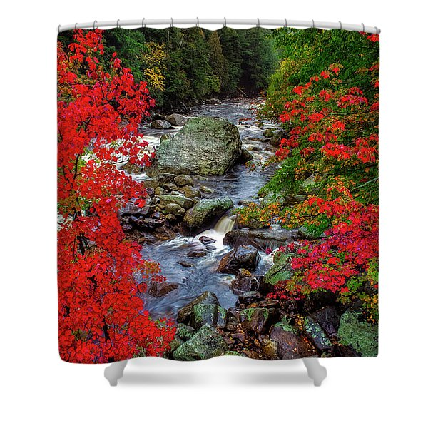 Natures Frame Shower Curtain