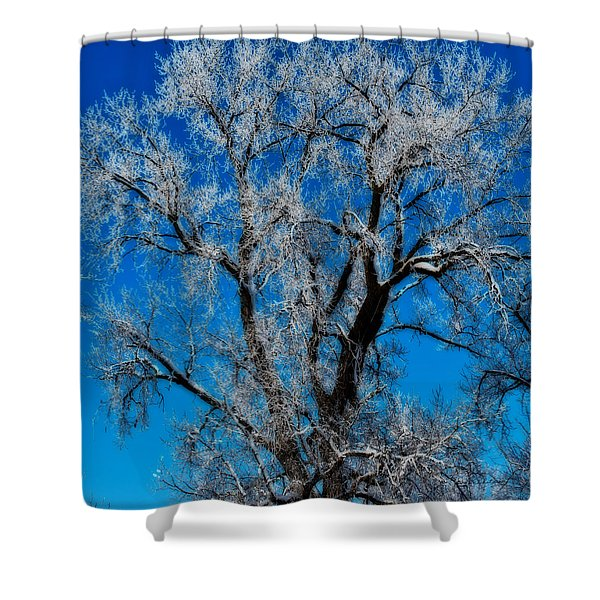 Natures Lace Shower Curtain
