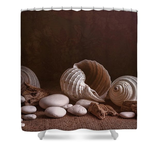 Natures Objects Still Life Shower Curtain