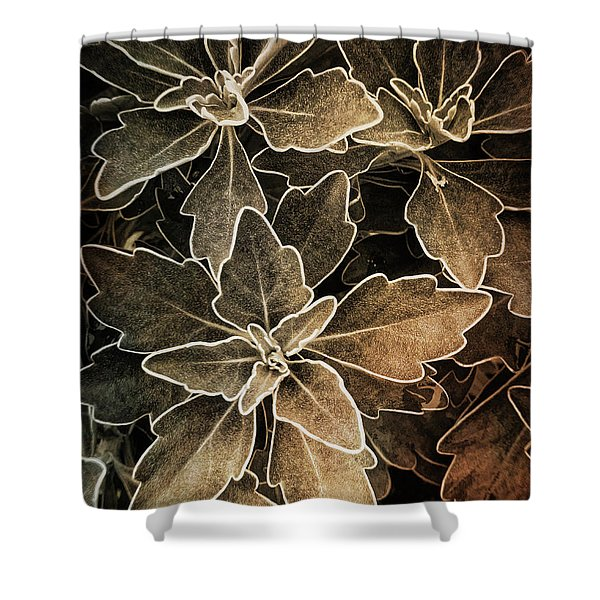 Natures Patterns Shower Curtain