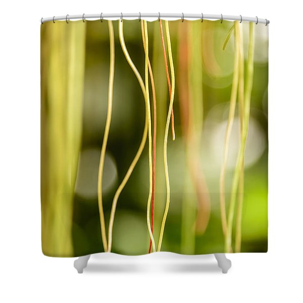 Nature's Strings Shower Curtain