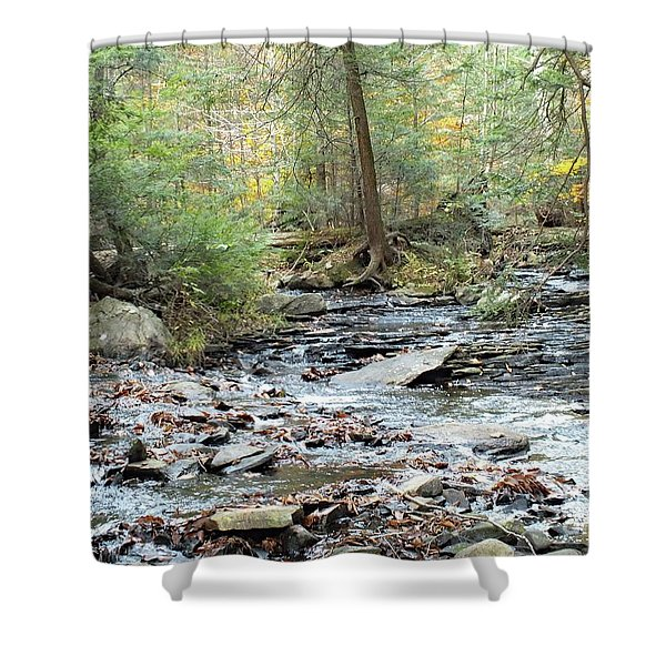 Nature's Finest 6 - Ricketts Glen Shower Curtain