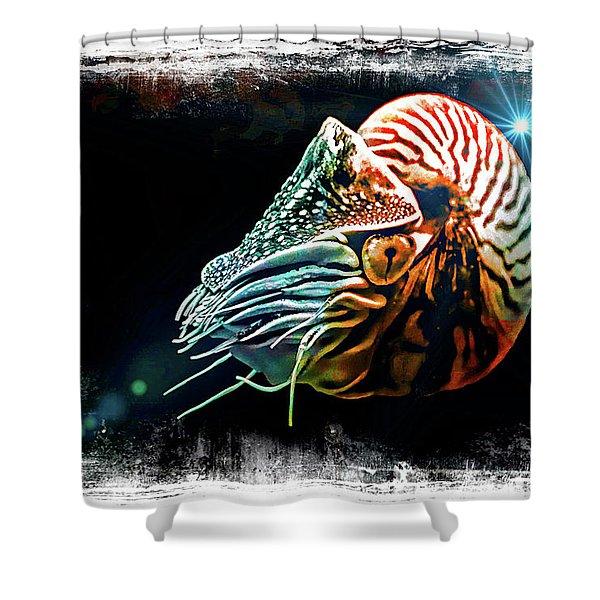 Nautilus Dreams Shower Curtain