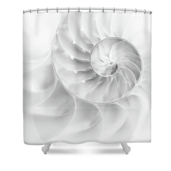 Nautilus Shell In High Key Shower Curtain
