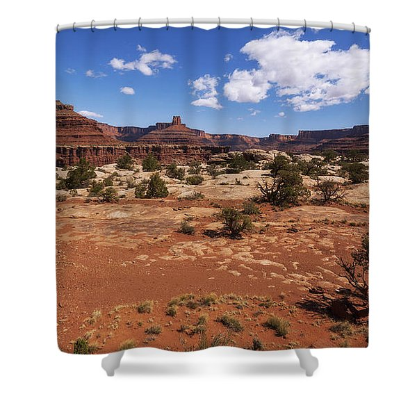 Near Goose Neck Shower Curtain