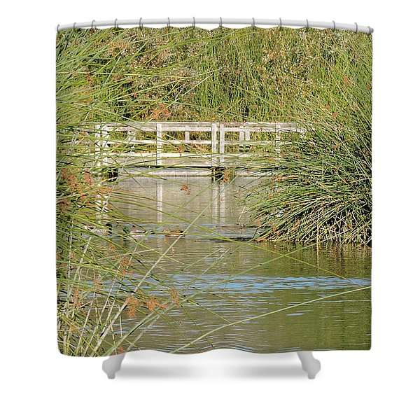Neary Lagoon Shower Curtain
