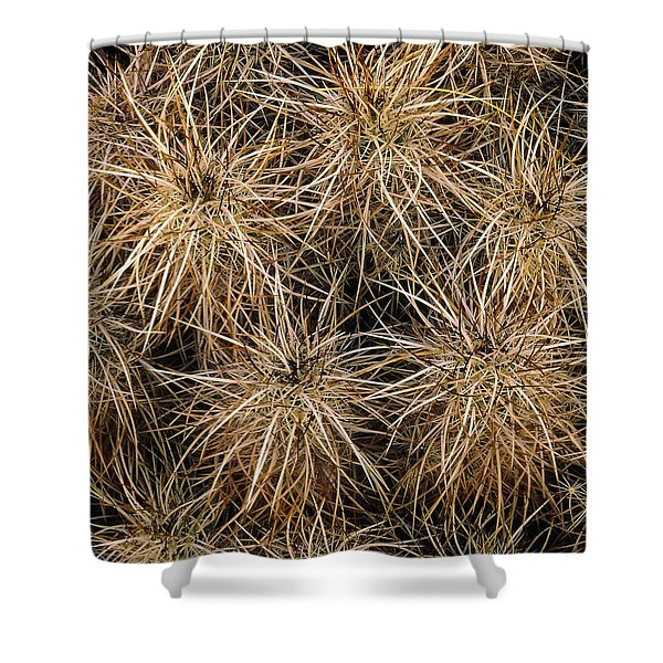 Needles And Hay Stacks Shower Curtain