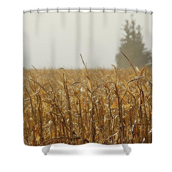 Neighborhood Pines Shower Curtain