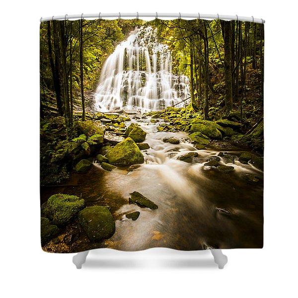 Nelson Falls Shower Curtain