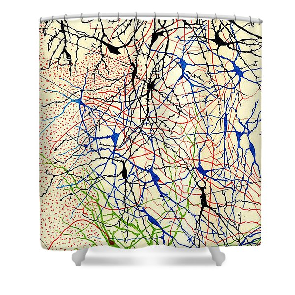 Nerve Cells Santiago Ramon Y Cajal Shower Curtain