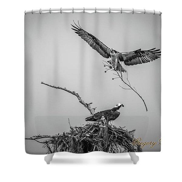 Nest Building 2m Shower Curtain