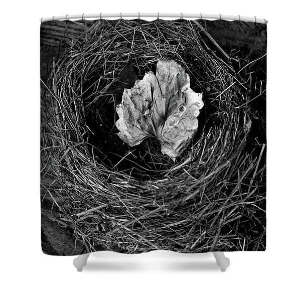 Nest In Time Black And White Shower Curtain