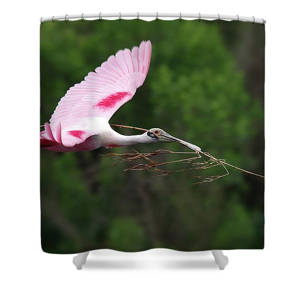 Nestorations. Shower Curtain
