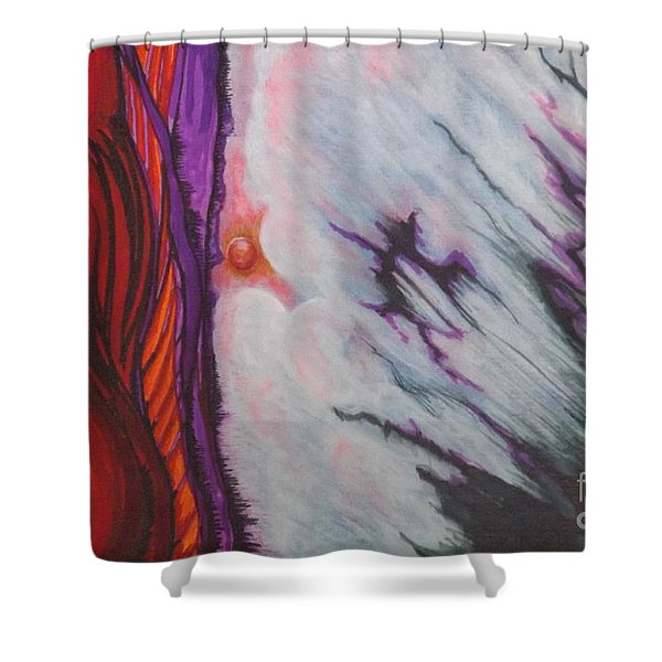 New Earth Shower Curtain