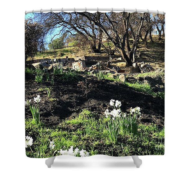 New Growth From Sandra Rosa Fires Shower Curtain